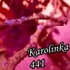 Karolinka441
