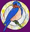 bluebird'ka
